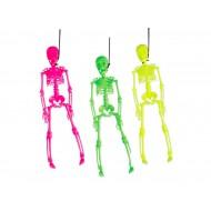 Squelettes fluo 3 assortis