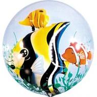Ballon Double Bubble Poisson Tropical
