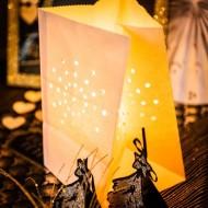 5 Lanternes de Sol Blanches Ignifugées