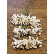 Fleurs Blanche sur Tige x12